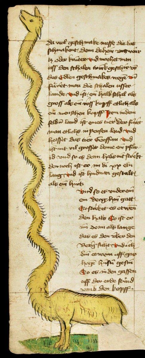 Giraffe. Travels of Sir John Mandeville. Upper Rhine, 2nd quarter 15th cent. St. Gallen, Stiftsarchiv (Abtei Pfäfers), Cod. Fab. XVI