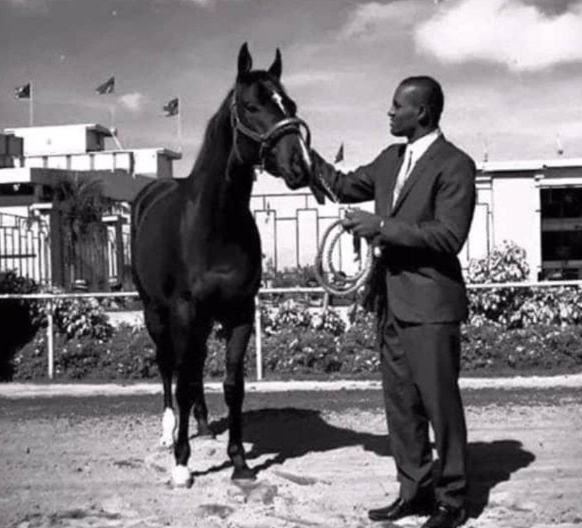 """Ricardo Olivencia a Twitter: """"Foto de Roberto Clemente con su caballo  """"Champion Bate"""" en el Hipódromo El Comandante de Carolina. El caballo se  mantuvo activo desde 1968 hasta 1970.… https://t.co/mUGhT9Z26f"""""""