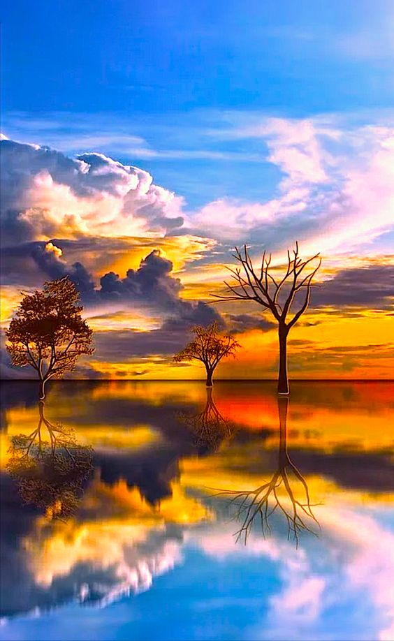 Evening my friends #photos #evening #sunset pic.twitter.com/27qfWMEKTm