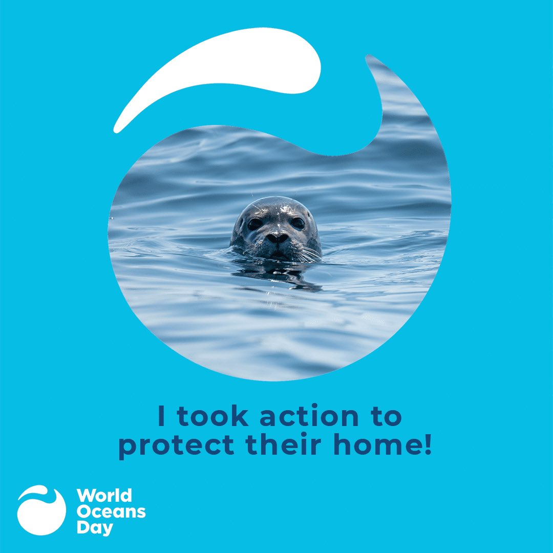 No water, no life; no blue, no green🦈🐋🐳🐟🐬🐠 #WorldOceansDay #ProtectOurHome https://t.co/M51gdHGDsP