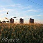 Image for the Tweet beginning: #Fuenlabrada | EXPOSICIÓN 'ECOS DEL