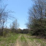 Image for the Tweet beginning: 28 acres RECREATIONAL LAND and