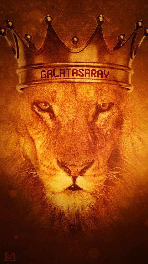 Selamun aleyküm renkdaşlar🦁  #Galatasaray  #herkesrütbesinibilecek https://t.co/ZXh1vZADfc