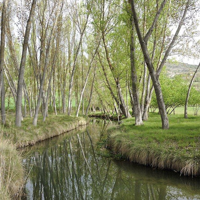 Nuestros ríos nos transmiten esa paz, relax y desconexión que en este momento tanto necesitamos!! #presumiendodeGuadalajara #Guadalajaramola https://t.co/IwHgJnYwUN