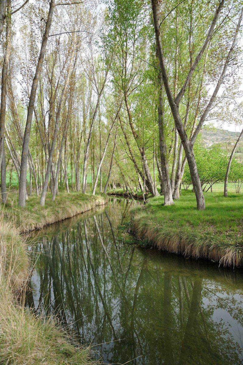 Nuestros ríos nos transmiten esa paz, relax y desconexión que en este momento tanto necesitamos!! #presumiendodeGuadalajara #Guadalajaramola https://t.co/qycWRzrJjP