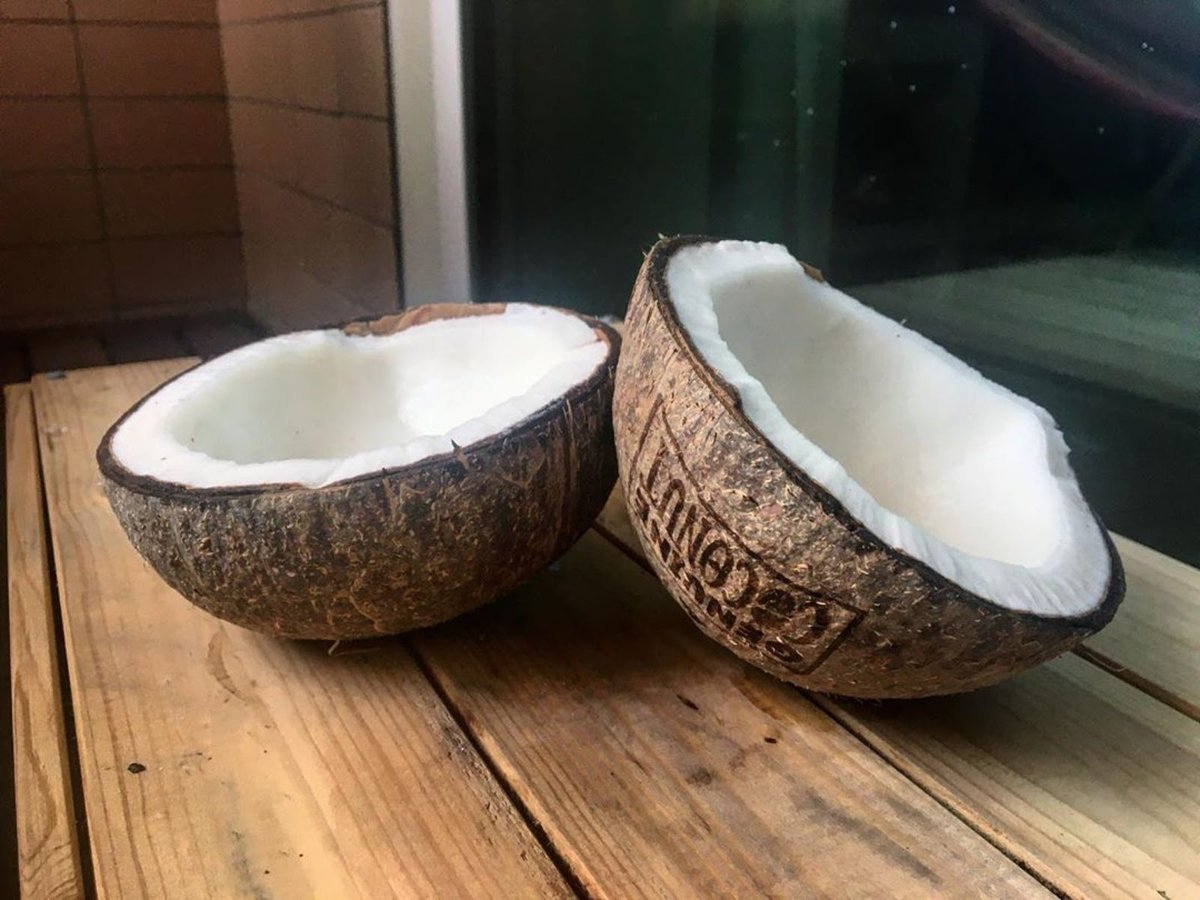 A new day, a new coconut   Credit @raquelduvale  #coconut #coconutwater #coconuts #coconuthead #coconutbowls #loveit #enjoy #enjoythelittlethings #sunnysideup #foodie #fruit #fruitlover #tropical #goodvibes #foodphotographypic.twitter.com/h52yaTlHts