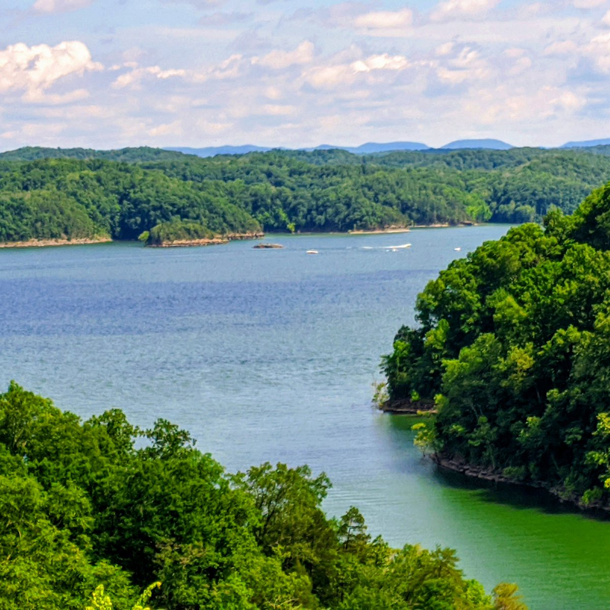 Beautiful Water on Lake Cumberland! View from the Lake Cumberland State Resort Park #lakecumberland #Kentucky #travelky #Travel #clearwater #cabins #hotels #bestvacations pic.twitter.com/hywXwDU8fM