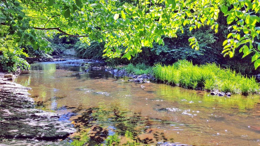 Another fine Saturday afternoon walk by the Water of Leith #Edinburgh #summertime #water #SaturdayMotivation #weekend #walking #green #Scotland #viewpic.twitter.com/J4ZvOtCeHQ – at St Bernard's Well