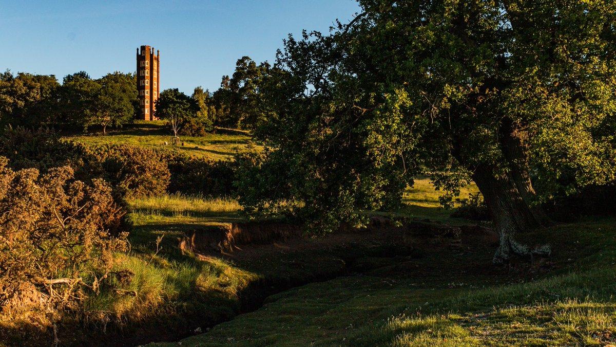 Folly  Freston, Suffolk   ISOlation Series: Taken in May 2020  #suffolk #freston #sunset #trees #natural #frestontower #explore #ISOlation_mf #adventure #eastanglia #gameoftones #landscapes_of_britain #bbceast #suffolklandscape #liveforthestory #photooftheday #shotofthedaypic.twitter.com/8N9flgwK14