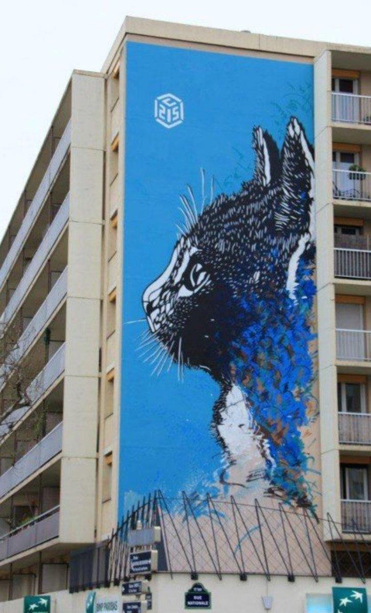 #streetart.  #urbanart.  #mural  #happycaturday  By : C215 ( Christian Guémy)pic.twitter.com/RoBKRn82FE
