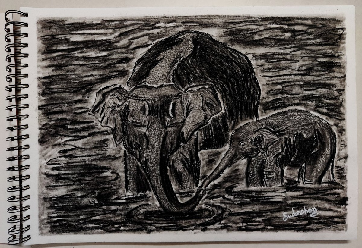RIP. #Elephant #wildlife #Kerala #keralaelephant #photography #tribute #RIPHumanity #loveislove #art #artist #drawing #artwork #style #WorkFromHome #like #covid19 #BlackLivesMattters #beautiful #follow #artsed #artsblog #artgallery #artnews #ArtLovers #India #lockdownlessonspic.twitter.com/Ciz3ifihGz