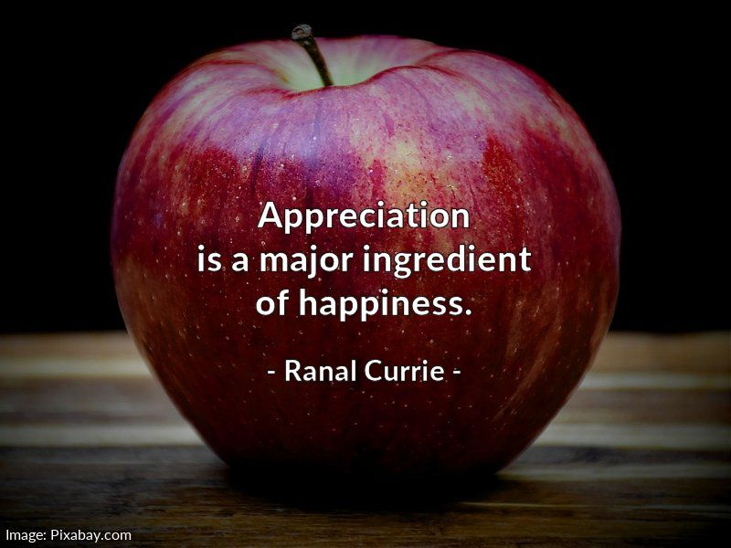 Appreciation is a major ingredient of happiness.  #quote #appreciation #happiness #SaturdaySunshine https://t.co/uZWtX6Sb3T