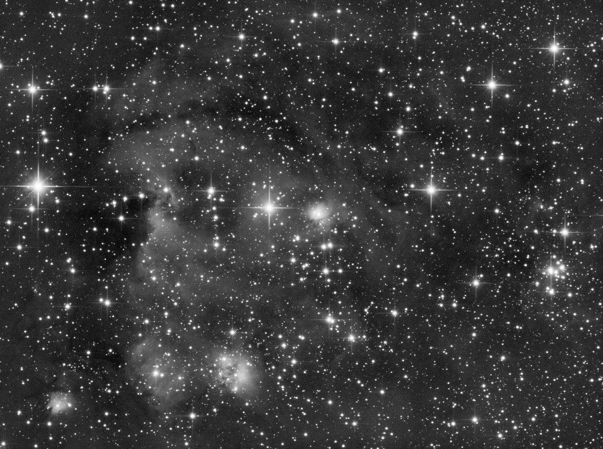 Things I was too afraid to ask, and never bothered to look up. Is there significance to the difference in structure of my images of the Monkey Head Nebula in visible light (Ha-SII-OIII) and Near Infrared (> 700nm) in the lower left? #Astrophotography #astronomypic.twitter.com/420IIK9zEL