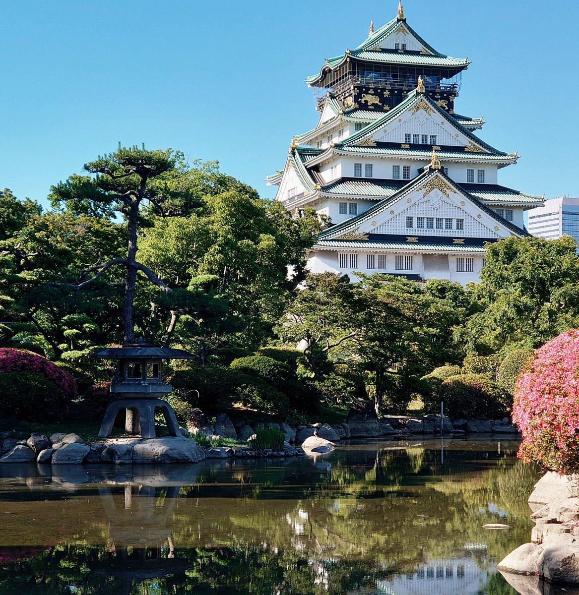 الوسم #純日本式庭園 على تويتر