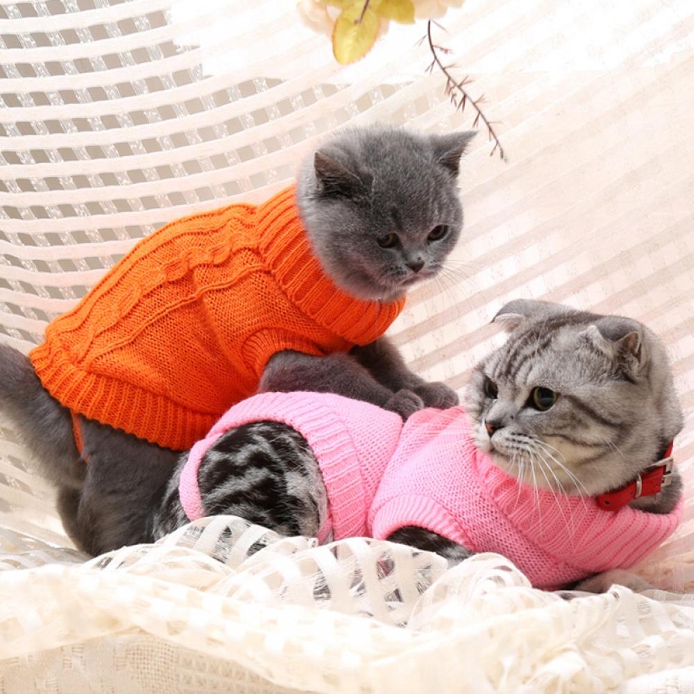 Warm Turtle Neck Sweater for Pets #glam #stylish https://snoopshopping.com/warm-turtle-neck-sweater-for-pets/…pic.twitter.com/qqqXRDbLLa
