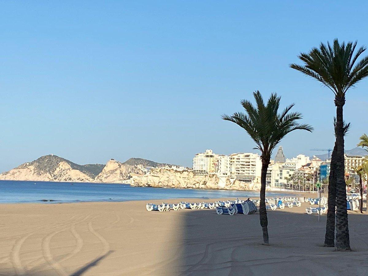 Sun shining ... Happy Wednesday everyone #beach #playa #palmtrees#palmera #summer #verano #holiday #lovebenidorm #costablanca #spain #españa pic.twitter.com/NHTkMtbdhY