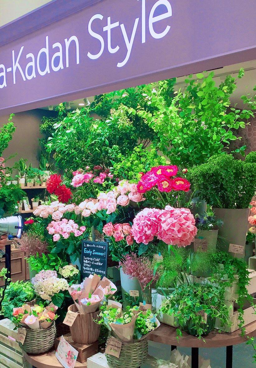 花壇 静岡 日比谷