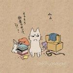あぁ…耳が痛い…部屋が片付かない人を叱ってくれる猫