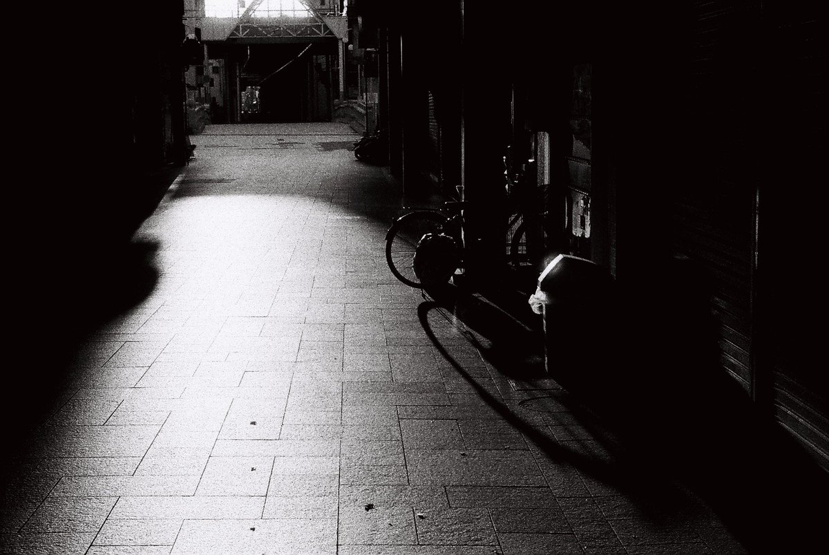 朝陽  Leica M-4P/Summitar 5cm f2.0  FOMAPAN 400 Action  #写真好きな人と繋がりたい #写真で伝えたい私の世界 #写真で奏でる私の世界 #ファインダー越しの私の世界 #キリトリセカイ #film #filmphotography #filmcamera #自家現像 #photography #monochrome #snapshot #coregraphy #leicapic.twitter.com/Ogw3lNOWCs