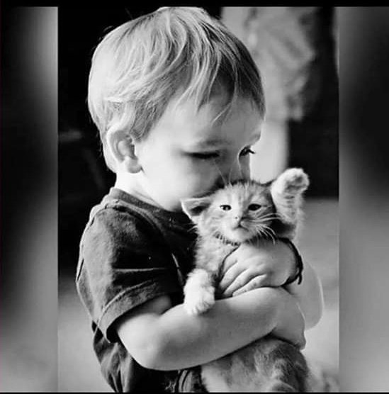 Teach your kids to be kind to animals, they will be good human beings. #WednesdayThoughts <br>http://pic.twitter.com/xPuVk61qPM