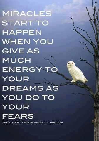Don't let #fear or #procrastination stop your #dream! What are you waiting for?🥳 #justdoit #WritingCommunity #writerslift #readers #writerslife @jandersbooks @melanie_korach @DKMarieAuthor @rowena_tisdale @TheJQWay @randywrites2012 @evesdadisbest @_carmenadams_ @Heidilynn_reads