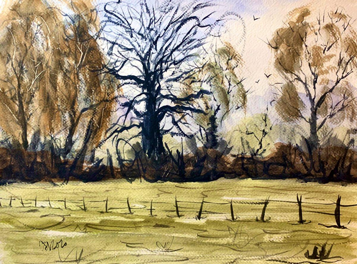Sketch of a dead tree. #watercolour #art #sketchbookpic.twitter.com/iRYMTa26uk