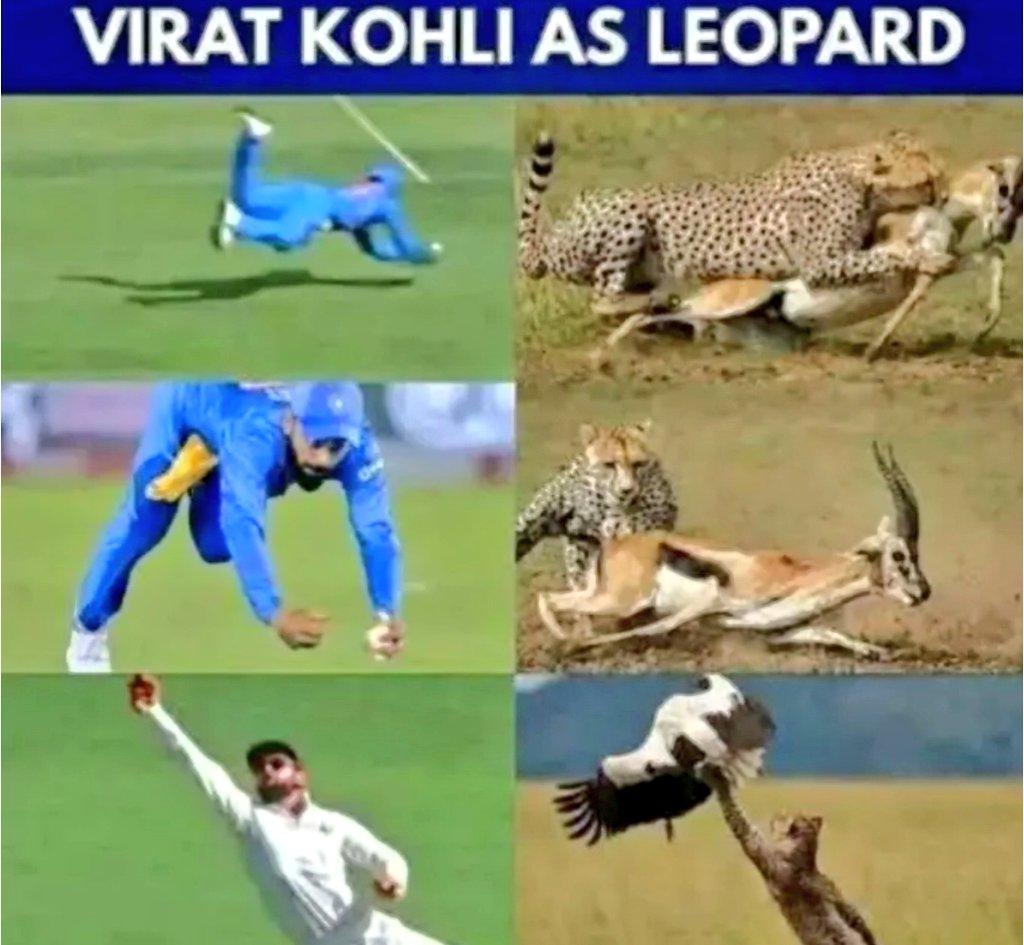 King kohli forever     Close Enough     @imVkohli     #ViratKohli || #KingKohli<br>http://pic.twitter.com/CcFRZI3TUA