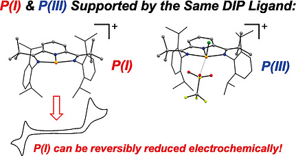 Herbert and co-workers report phosphorus coordination complexes supported by the diiminepyridine ligand framework bearing sterically imposing and electron-releasing tBu substituents on the imine carbon atoms of the ligand @jasonbraun27 @thechemdr doi.wiley.com/10.1002/ejic.2…