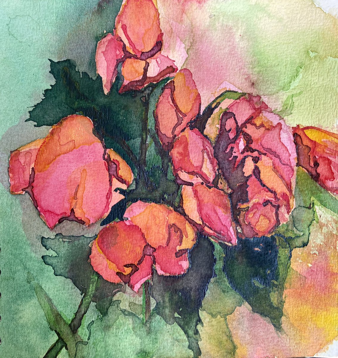 Roses I #roses #rosas #flowers #fleurs #mygarden #monjardin #jardin #garden #instart #sketch #aquarelle #watercolor #acuarela #arte #art #gardenartpic.twitter.com/NPbeNb9Ucr