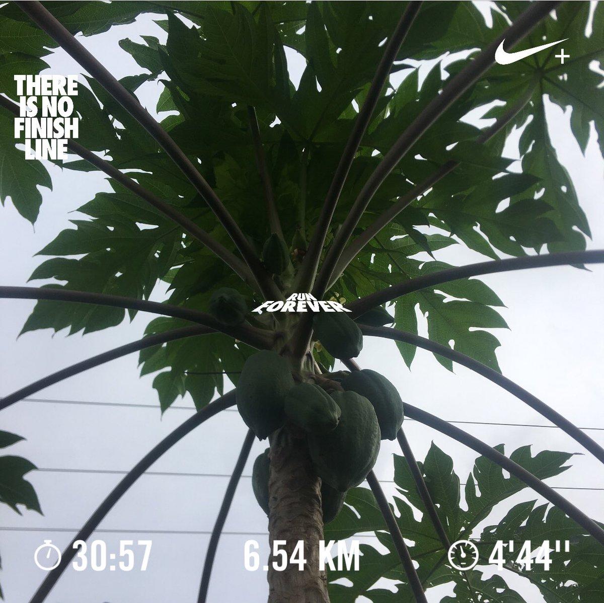 6..54km for the midweek #StayinCHRIST #StayFit #JustDoIt #nrc #nikerunning #nikerunclub #running #recoveryrun #recovery #iheartnike #halfmarathontraining, #Nike #iheartrunning @teamnike #runningismytherapy #runninglife @universeRunners @bennettrun @gtbahamas
