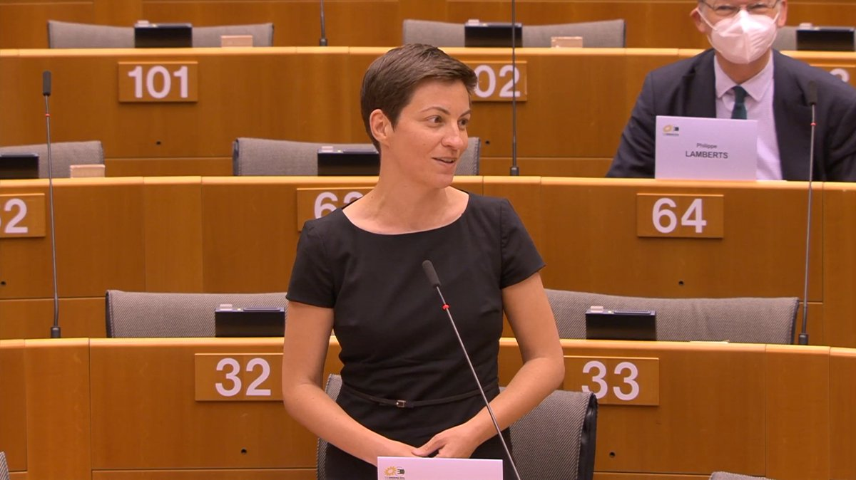 Some governments think they can do it alone. But they should think again. They have all benefited even more than other member states from the single market, from the freedom of movement, and some, unfortunately, also from a bit too lax tax rules. @SkaKeller #EPlenary
