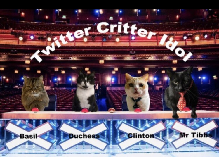 Thanks to everyone for participating in the 1st ever #TwitterCritterIdol You're all fabumouse 🐭 and have made it a wonderpurr success! It was a furry difficult decision, but I'm delighted to announce the winner 🏆of #TwitterCritterIdol is ..  *drum roll* .. Storm @claraandstorm https://t.co/gXuD9C81ov