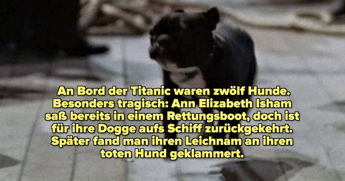18 spannende Fakten über die Titanic-Tragödie, die genauso unter die Haut gehen wie der Film https://www.buzzfeed.com/de/shelbyheinrich/fakten-uber-die-titanic?utm_source=dlvr.it&utm_medium=twitter…pic.twitter.com/oaSJrWEj32  by WooT Gaming