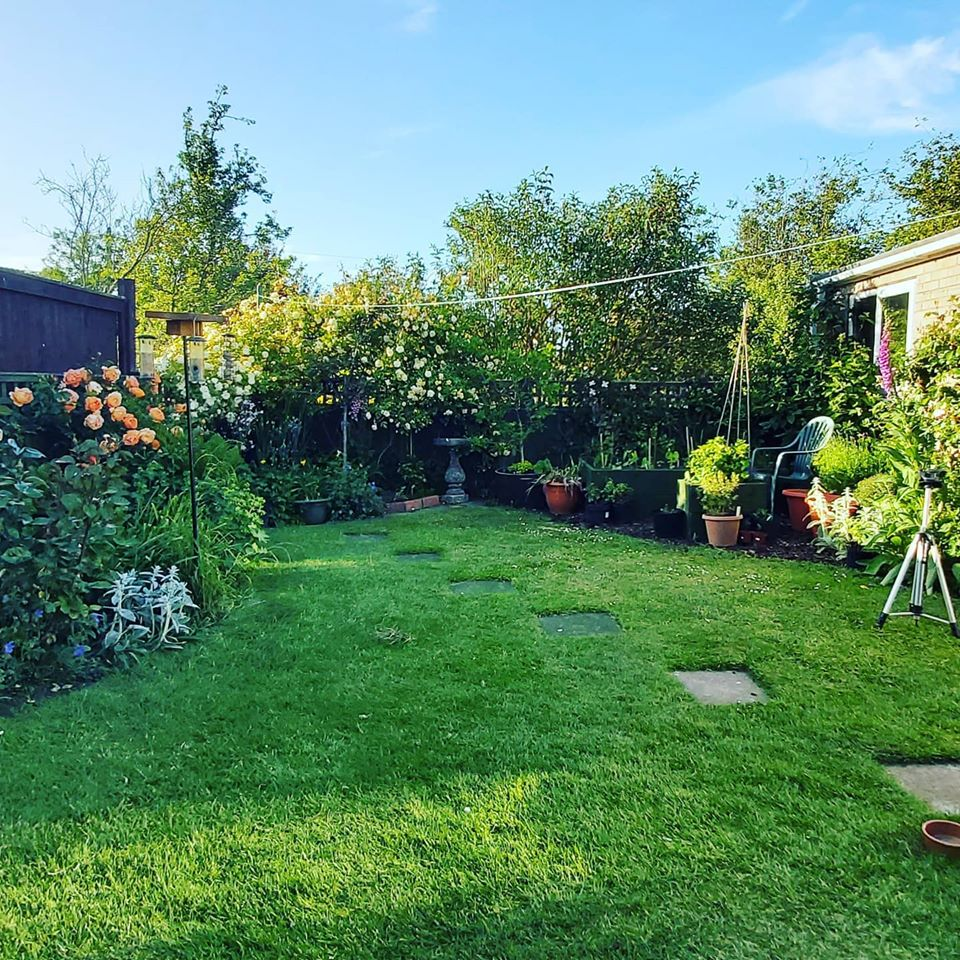 You are nearer to God in a garden than anywhere else on earth! (My late Mum-in-Law) #perfect — in Haxby. pic.twitter.com/ZcrYUCleSC
