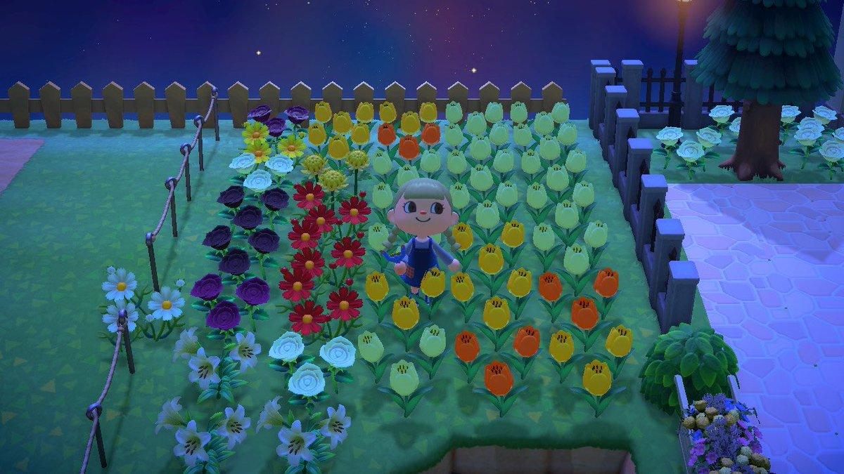 た 増え 森 すぎ あつ 花