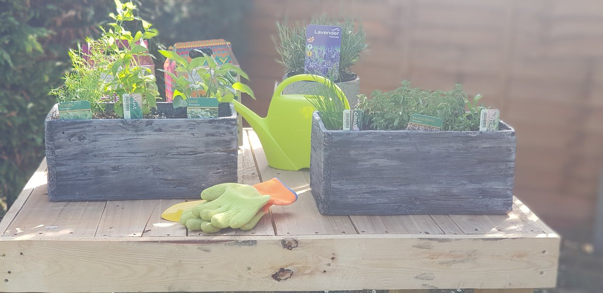 Loving my new potting table... made by hubby out of old pallets! #lockdown #upcycling #keepingbusy pic.twitter.com/5dlewefANi