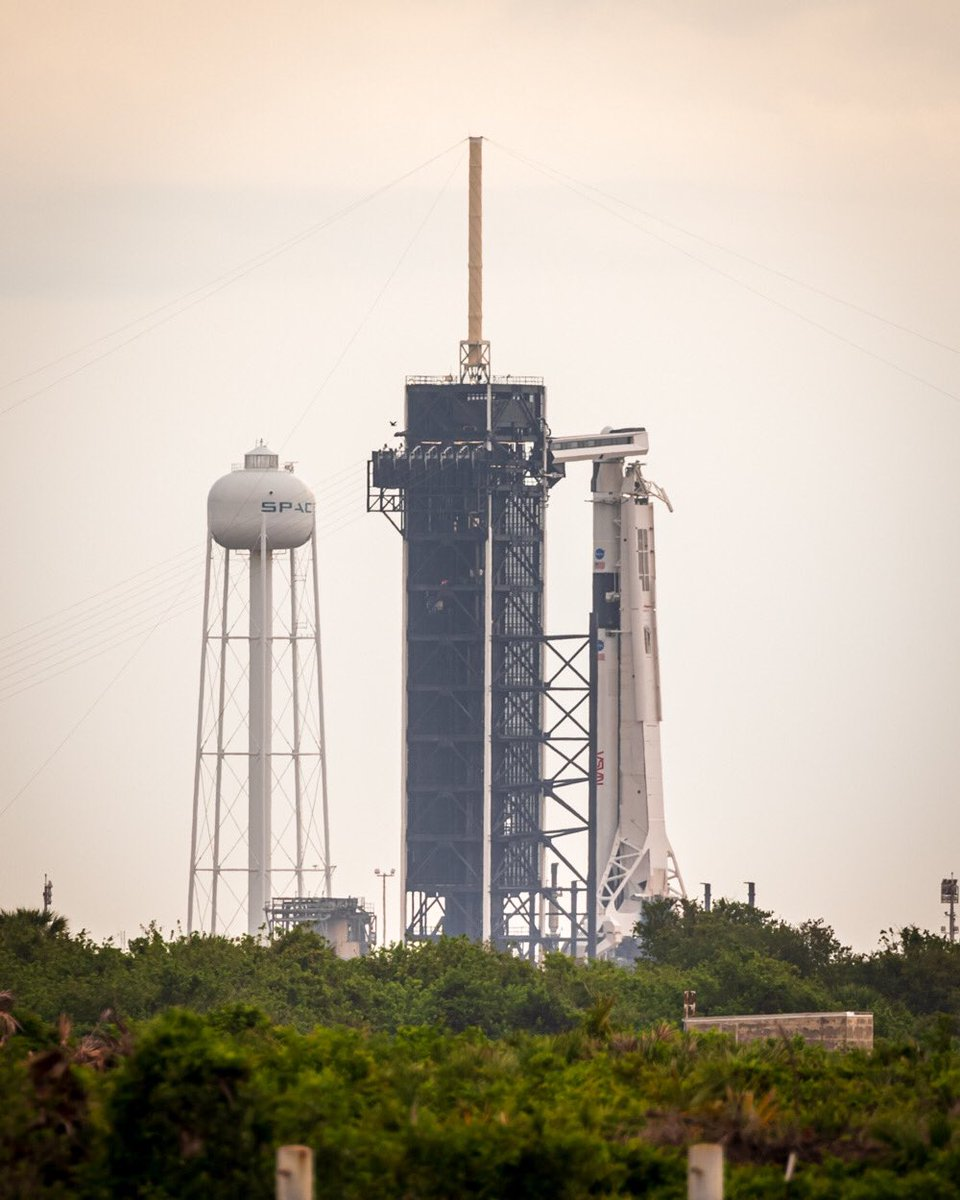 Are you watching yet?? We're live on NASA.gov/live... < 1.5 hrs to go - tune in now as we launch @Astro_Doug & @AstroBehnken on the @SpaceX #CrewDragon @nasa. Thanks to @tmahlmann for this photo, captured moments ago @NASAKennedy