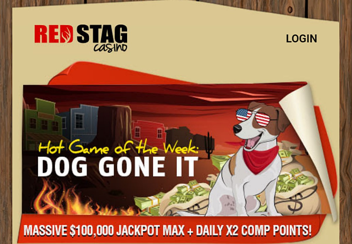 Latest Red Stag casino bonuses 2020. Daily 325% match and 100 free spins bonus https://t.co/Y4Sm9pXtSR #casino #match #slots #freespins #bonus #CouponCode #casinobonus #casinoUSA #CasinoAustralia #RedStag https://t.co/3WNdVYYqDn