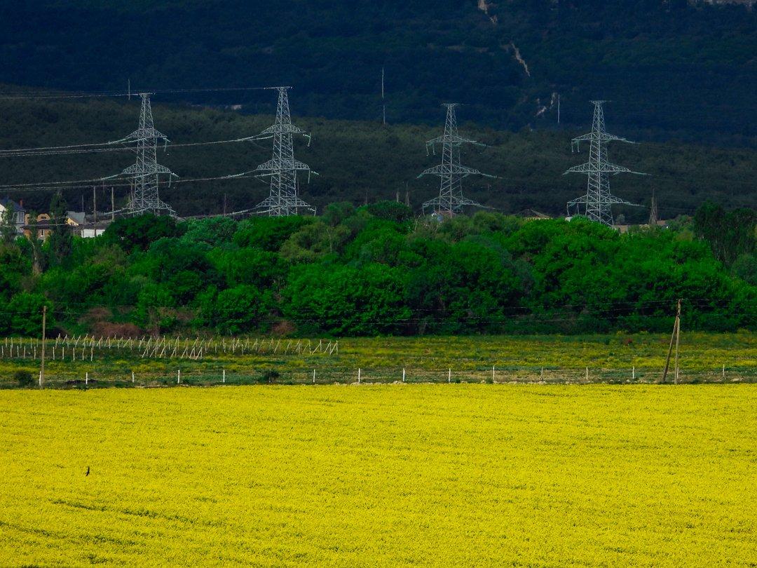 Говорят, самые популярные маковые поля в Крыму перепахали тракторами. Меняем красное на желтое! Тренд следующих выходных дней — рапсовые поля. Фотки получаются не хуже  #Крым #Крыминформ #фотосессия #рапс #поле #сезон #выходные #подготовкаpic.twitter.com/dzL7TJdv4N