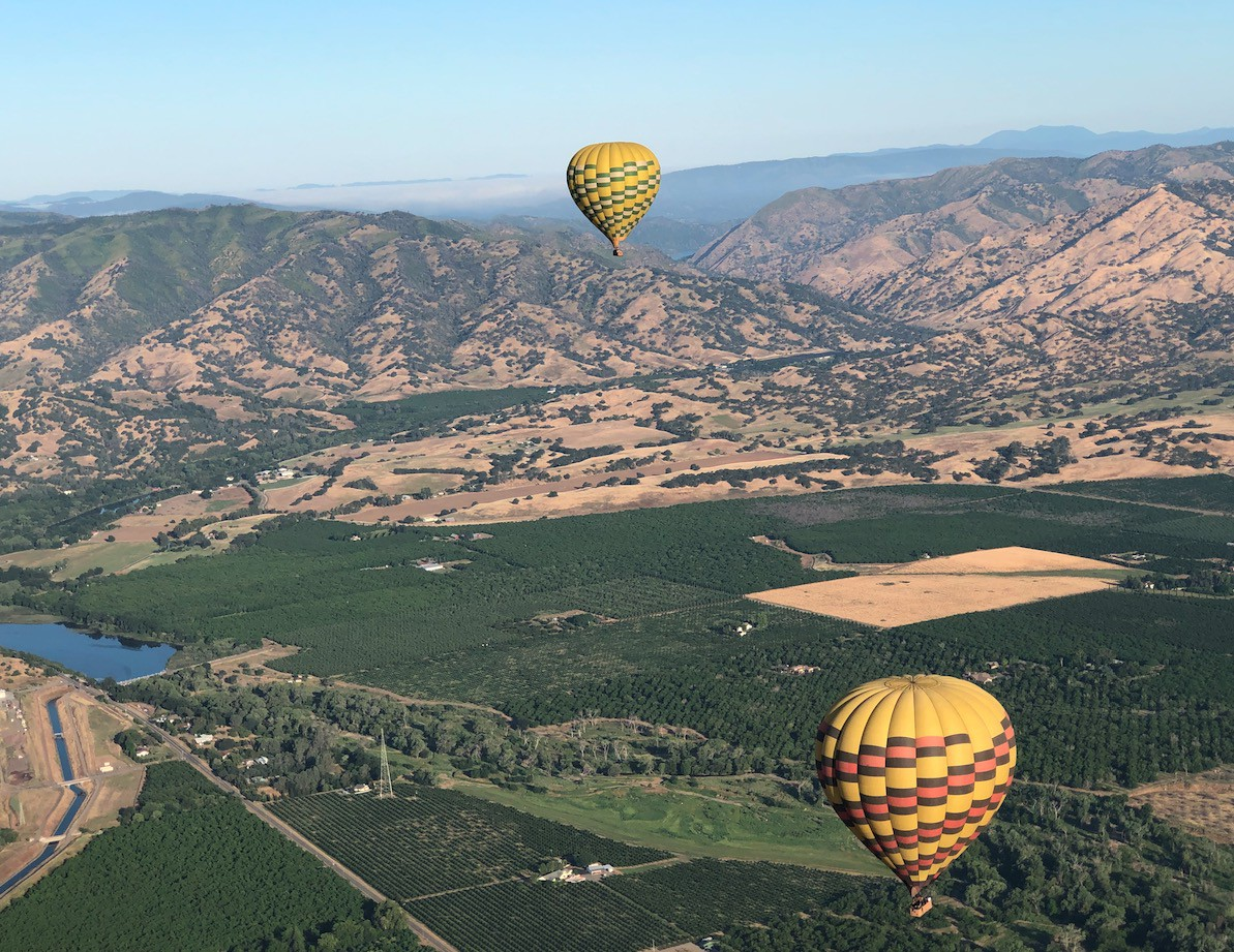 During summer and fall, you'll notice Napa turns golden. The only green that's left is mostly vineyards! What a sight to behold! #napavalley #hotairballoonridespic.twitter.com/yUNN974FAd