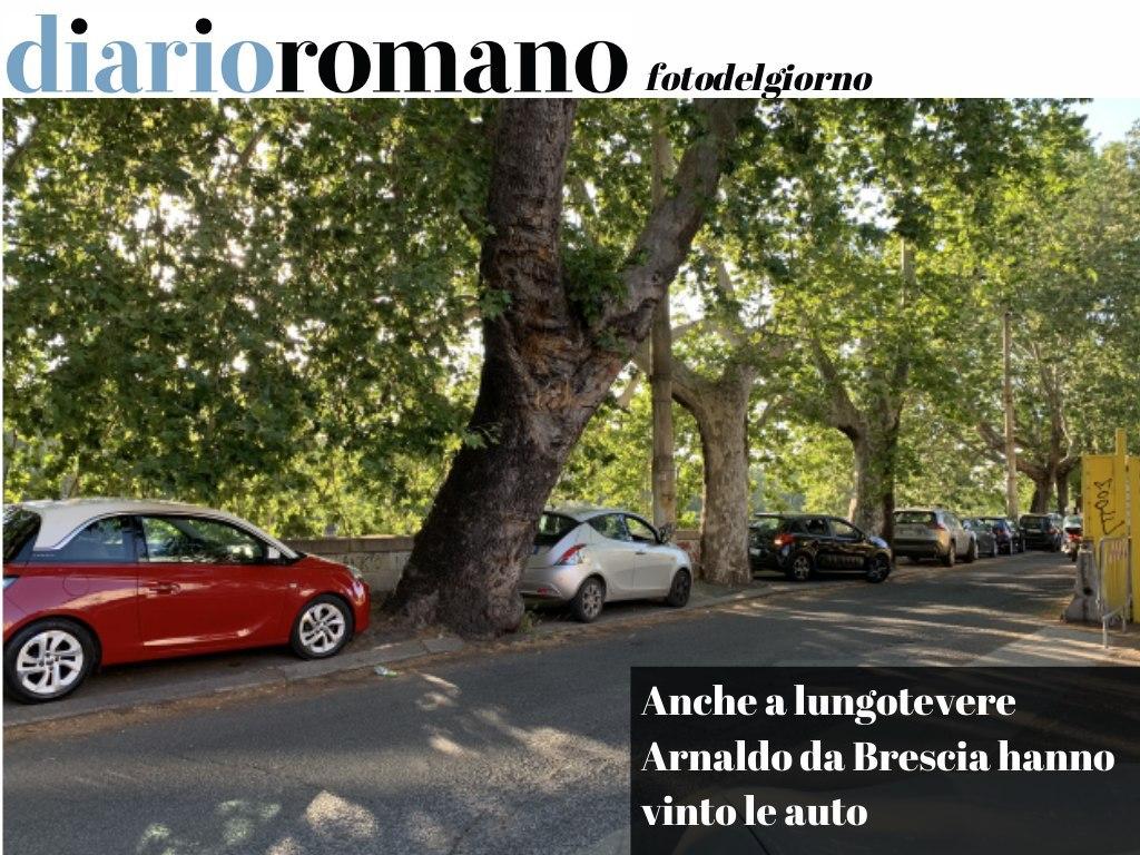 test Twitter Media - La protezione del marciapiede di lungotevere Arnaldo da Brescia è durata ben poco ed i pedoni sono di nuovo costretti a passare sulla carreggiata. . #Roma #foto #lettori 📸 https://t.co/9XBckw7knr