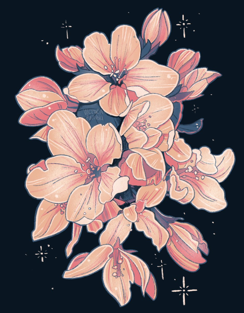 I keep seeing various artists make pretty plant art on dark solid backgrounds with some kind of star glittering around, so I tried that too~  #plants #plantart #botanicalart #flowers