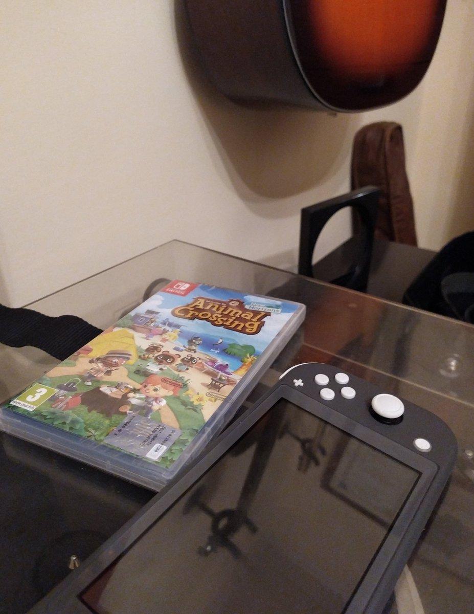 procrastination at its best #AnimalCrossingNewHorizons #acnh #NintendoSwich