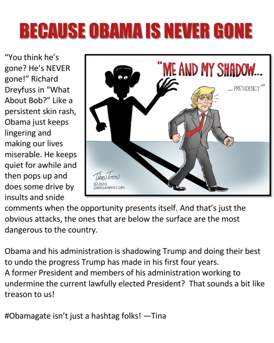 """#Obama is still working behind the scenes to """"transform"""" America. No one knows this better than @realdonaldtrump. He weaponized the @FedGovt & is now using his useful idiots to impede the #TrumpAdministration at all costs. #TinaToon @grrrgraphics<br>http://pic.twitter.com/t3VnYt4mNA"""