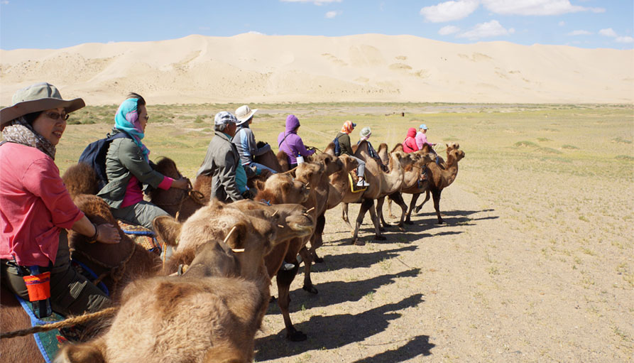 Although all our travel plans have been put on hold, for now, let's find out some skills and information that could be useful in the Gobi Desert. Enjoy reading!  https://t.co/5n6IkiRcdJ  #DiscoverMongolia #Mongolia #travel #vacation #adventure #traveling #trip #tours #gobi https://t.co/34KuEpQ63S