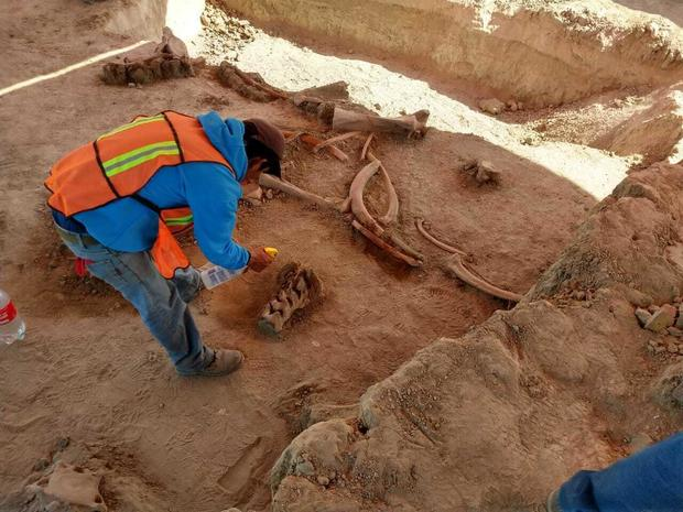 Bones of about 60 mammoths found near ancient lake in Mexico cbsn.ws/2XzkJi7