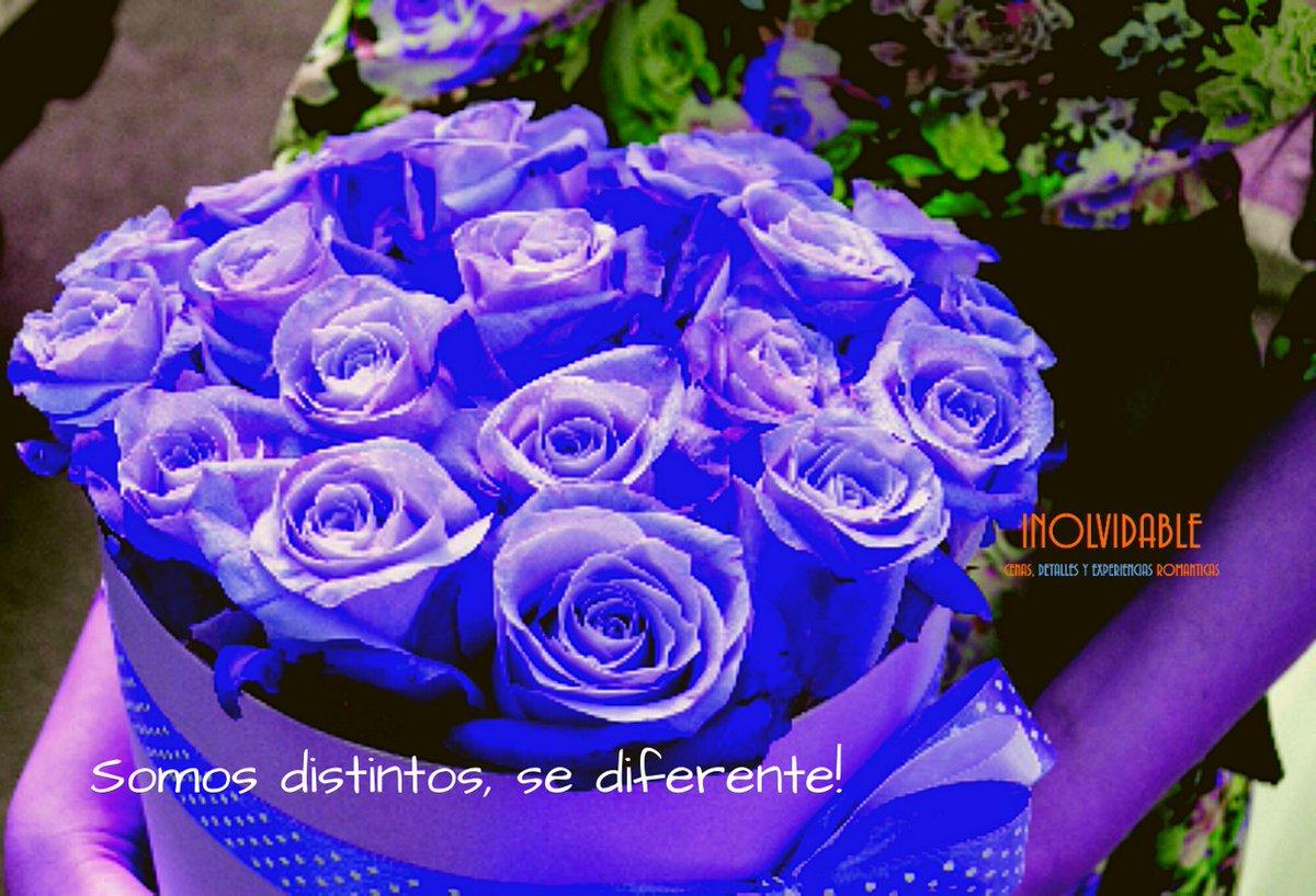 No somos lo mismo, somos distintos! Si la persona es especial el #detalle debe ser especial Se #diferente! #LindaNochepic.twitter.com/Kc5CWh1ZoZ
