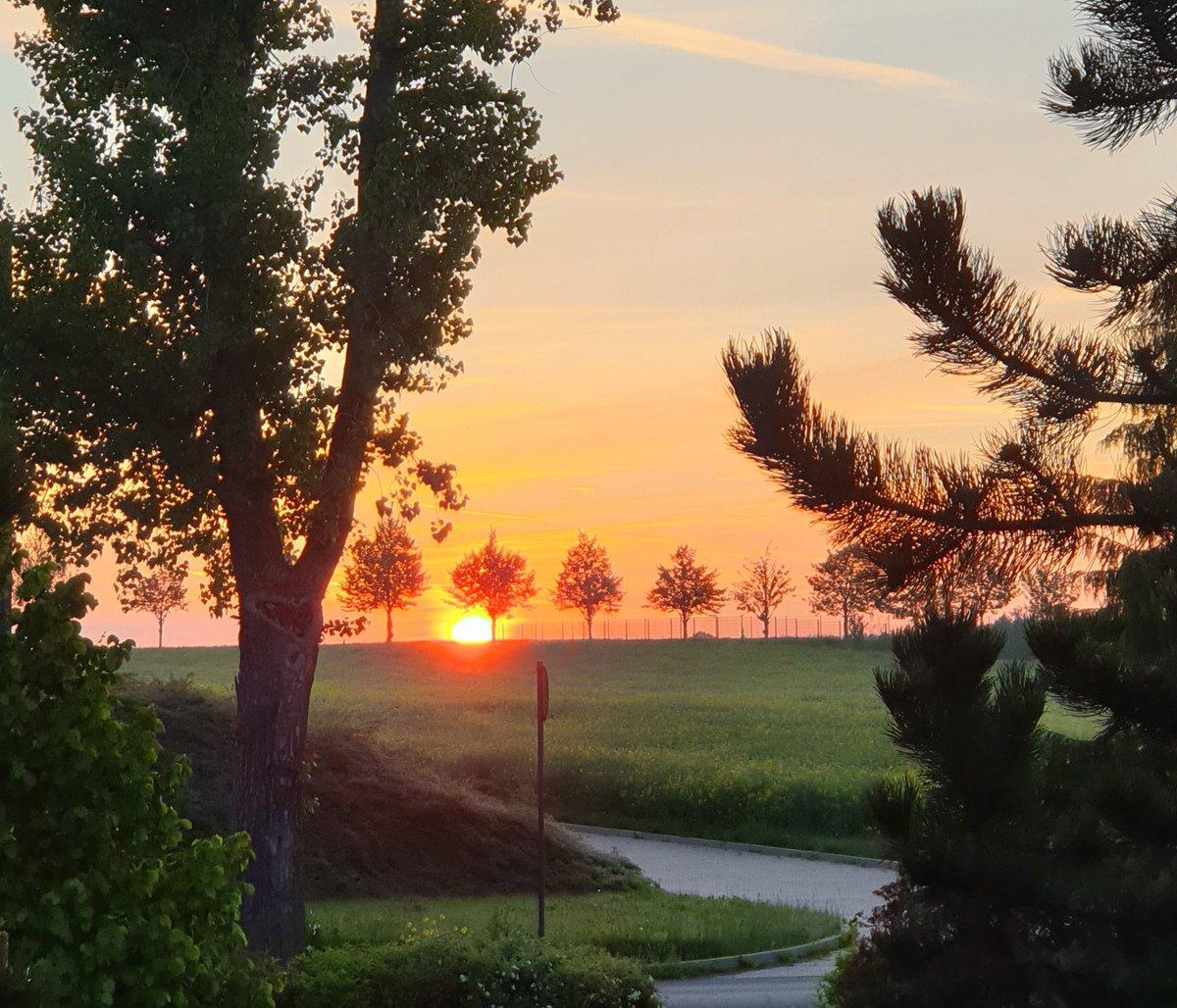 Guten Morgen ihr Lieben  😊 Kommt gut durch den Donnerstag und lasst euch nicht ärgern 😉 Heute klopfen die Regentropfen ans Fenster da kommt mir der Sonnenaufgang von gestern gerade recht 😉 Passt auf euch auf 🙂 ☕☕☕ rüberschieb https://t.co/QFic2LvWQU