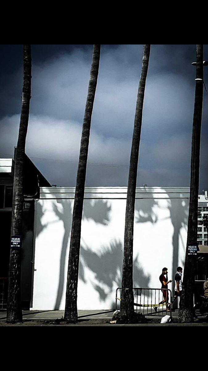 Venice Beach... . . . . #thephotosociety #streetsanfrontieres #eyephotomagazine #shotonmoment #spicollective #lacphoto #myspcL #la  #citykillerz #urbanromantix #gramslayers #la_shooters #richardgreenla #venicebeach #palmtrees #venicepic.twitter.com/uQpWu4FsSk