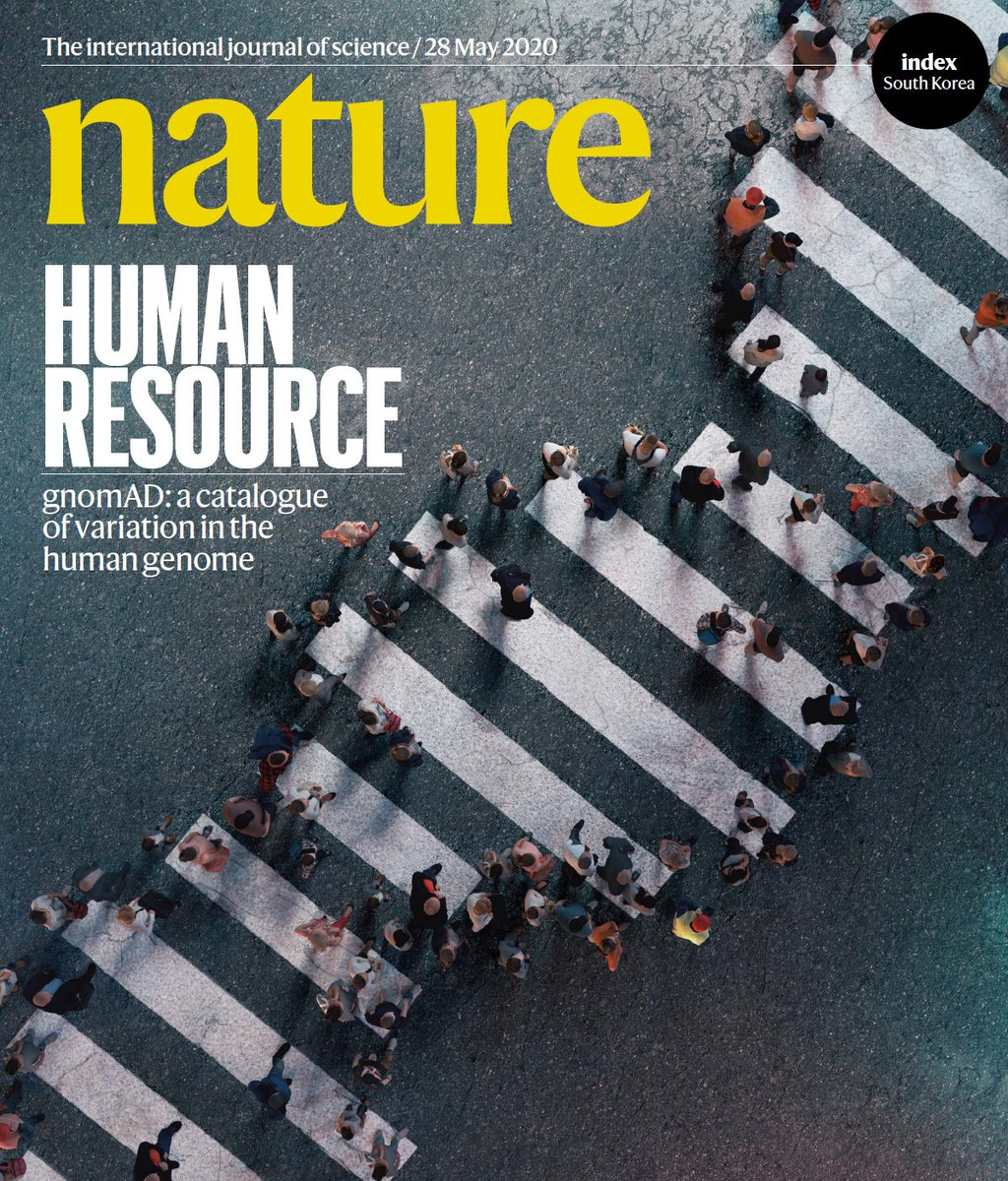 A catalogue of predicted loss-of-function variants from 125K whole exomes & 15K whole genomes from the Genome Aggregation Database reveals the spectrum of mutational constraints that affect these human protein-coding genes - just out in @nature https://t.co/xqxIBFoUdi #gnomAD https://t.co/Jt8xPq5F7f